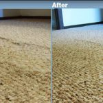Carpet Cleaners in Minneapolis