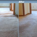 Carpet Cleaners in Apple Valley