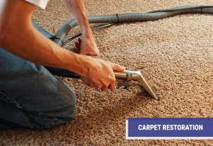 carpet restoration services with the professionals at Advanced Carpet Restoration