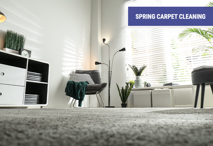 Spring Carpet Cleaning Company