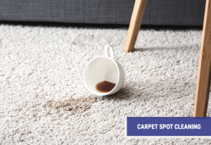 Carpet Spot Cleaning Company
