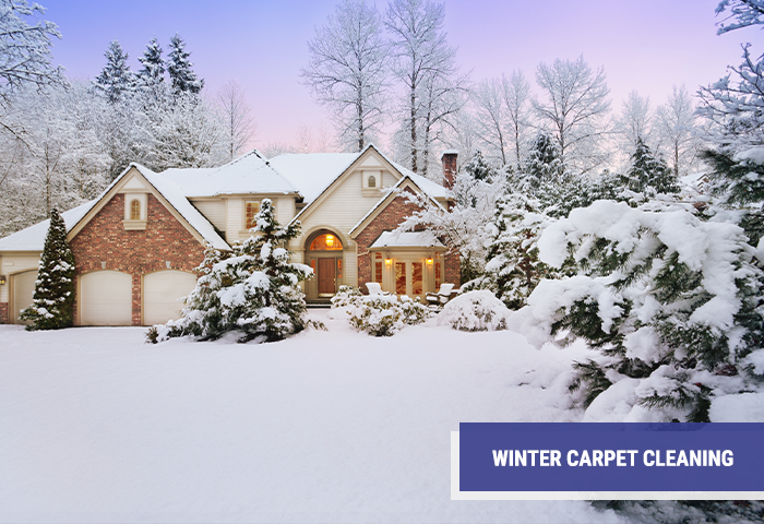 Winter Carpet Cleaning Services