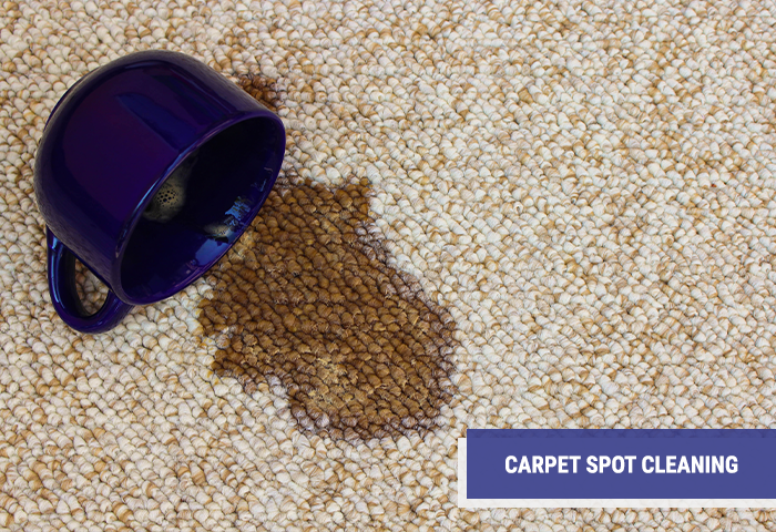 ACR Carpet Spot Cleaning Company